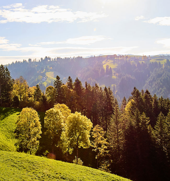 kambly-landschaft-Ein-Beitrag-zur-Lebensqualitaet_Mobile